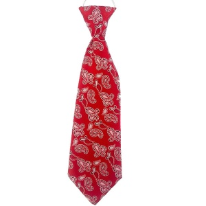 Boys Red Paisley Satin Tie on Elastic