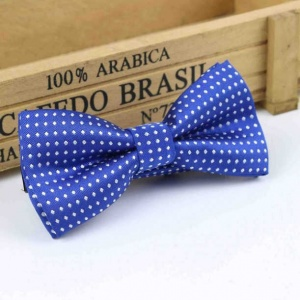 Boys Royal Blue Polka Dot Bow Tie with Adjustable Strap