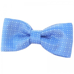 Boys Blue Dot Dickie Bow Tie on Elastic