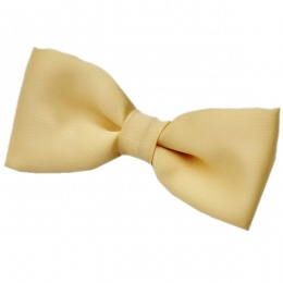 Boys Gold Satin Plain Dickie Bow Tie on Elastic