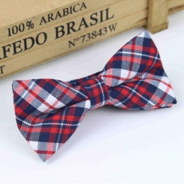 Boys Red & Navy Tartan Dickie Bow with Adjustable Strap