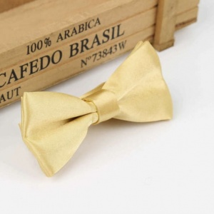 Boys Gold Satin Bow Tie with Adjustable Strap