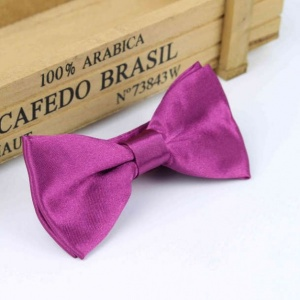 Boys Plum Satin Bow Tie with Adjustable Strap