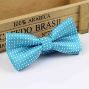 Boys Turquoise Polka Dot Bow Tie with Adjustable Strap