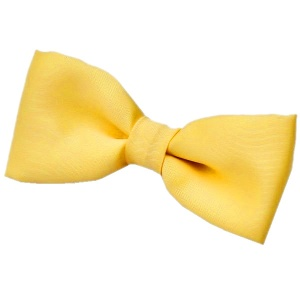Boys Yellow Satin Plain Dickie Bow Tie on Elastic