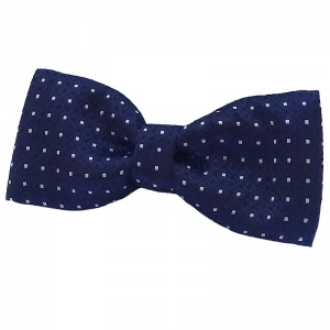 Boys Navy Dot Dickie Bow Tie on Elastic