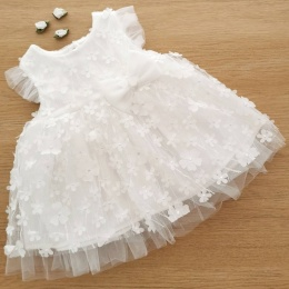 Baby Girls Ivory Applique Flower Sparkle Bow Dress