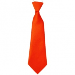 Boys Orange Plain Satin Tie on Elastic