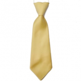 Boys Gold Plain Satin Tie on Elastic