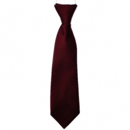 Boys Burgundy / Wine Plain Satin Tie on Elastic