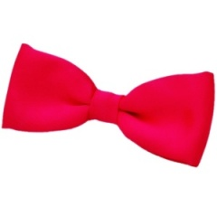 Boys Cerise / Hot Pink Satin Plain Dickie Bow Tie on Elastic