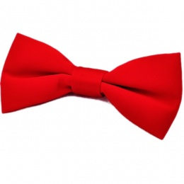 Boys Red Satin Plain Dickie Bow Tie on Elastic