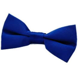 Boys Royal Blue Satin Plain Dickie Bow Tie on Elastic