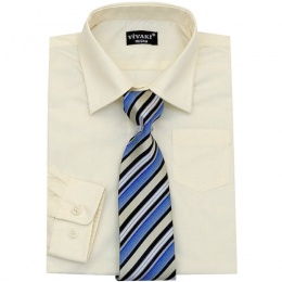 Boys Cream Formal Shirt & Tie Box Set