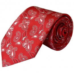 Boys Red Paisley Satin Tie (45'')