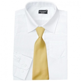 Boys White Formal Shirt & Gold Tie