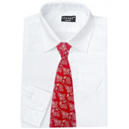 Boys White Formal Shirt & Red Paisley Tie
