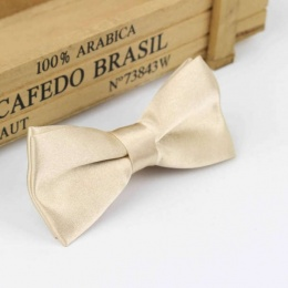 Boys Champagne Satin Bow Tie with Adjustable Strap