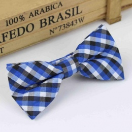 Boys Blue Check Dickie Bow with Adjustable Strap