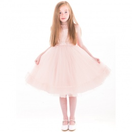 Girls Pink Crystal & Pearl Embroidered Organza Dress