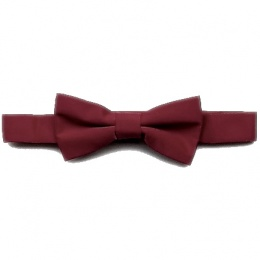 Boys Burgundy Pre-Tied Bow Tie on Band