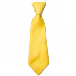 Boys Yellow Plain Satin Tie on Elastic