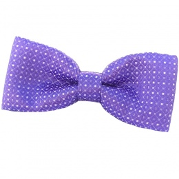 Boys Purple Dot Dickie Bow Tie on Elastic